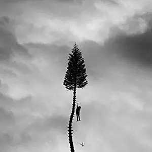 A Black Mile To The Surface by Manchester Orchestra album cover